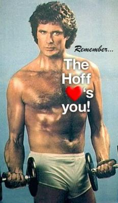 Remember_the_Hoff_Loves_You