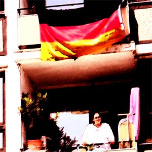 srg-flag