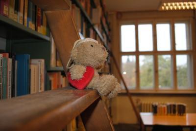 bibliotheksbaer
