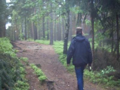 Immerguter Wald