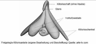 Wie vergrößere ich meine Klitoris