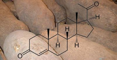 natuerliches-progesteron
