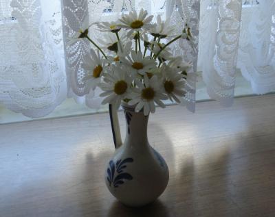 Rasenbluemchen
