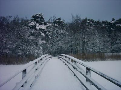 Schnee-in-Prerow