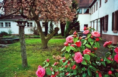Garten_Blueht
