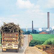 Zuckerrohrlastwagen in Brasilien mit Alkohol-Fabrik im Hintergrund