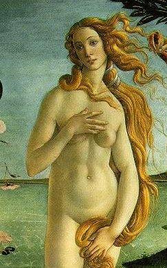 Boticelli Geburt der Venus Ausschnitt