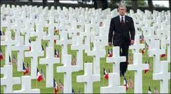 Bush Deaths