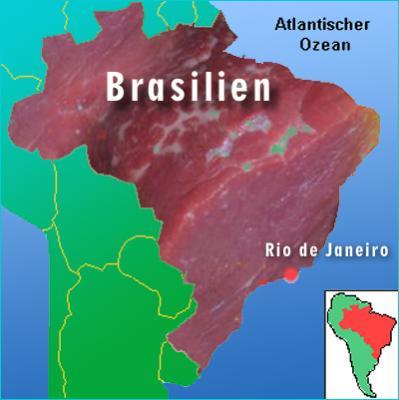 Fleischland Brasilien