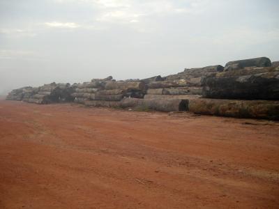 Regenwald-Abholzung Brasilien