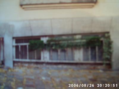 Bild-103