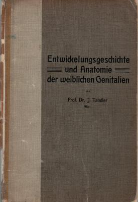 Entwicklungsgeschichte-und-Anatomie-der-weiblichen-Genitalien