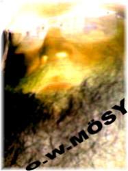 O W MOESY VISIONAER UND MEHR