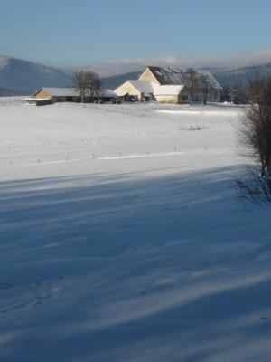 Oberfrauenau-4