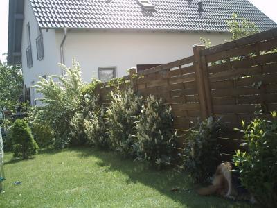 rechte-Seite-Garten