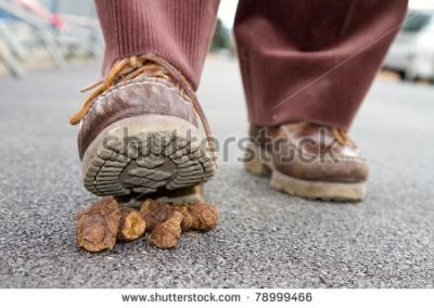 stock-photo-walking-on-dog-crap-78999466