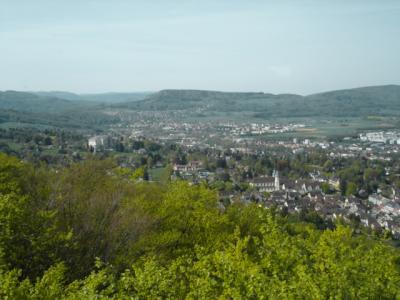 Burg-Reichenstein-Arlesheim3