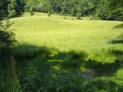 Eremitage-Arlesheim1