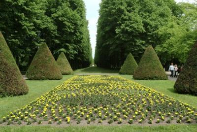 Franz-Garten-Celle