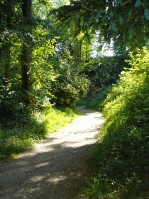 Hugstetter-Schlosspark1