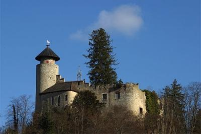 Roland-Zumbuehl-Schloss-Birseck-Arlesheim