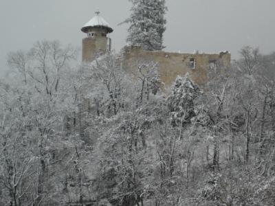 Schloss-Birseck-Arlesheim