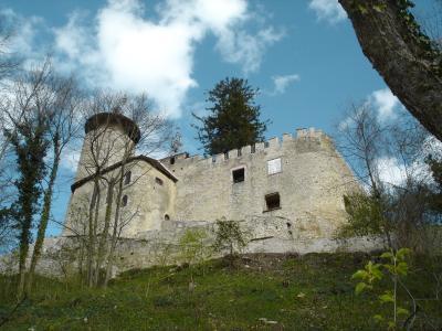 Schloss-Birseck-Arlesheim11