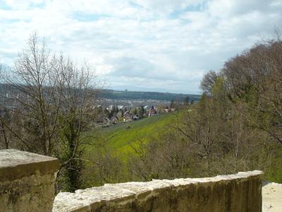 Schloss-Birseck-Arlesheim12