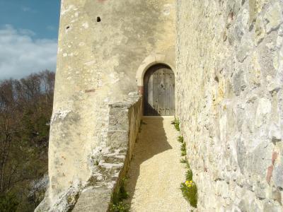 Schloss-Birseck-Arlesheim18