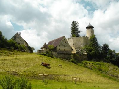 Schloss-Birseck-Arlesheim7