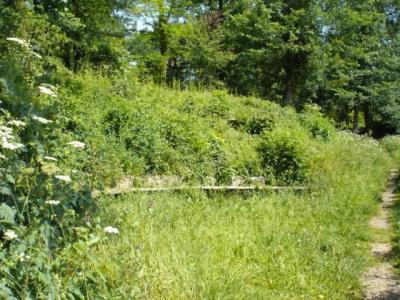Schlosspark-Hugstetten-Aussichtspunkt