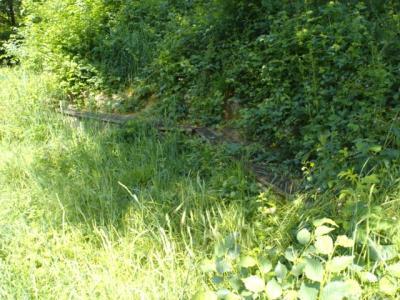 Schlosspark-Hugstetten-Aussichtspunkt2