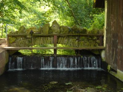 Schlosspark-Hugstetten1