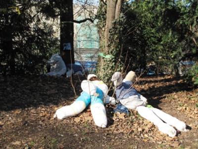 Schach matt gesetzt sind nun auch die Baumwachen im Mittleren Schlossgarten