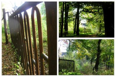 Collage_Herbstspaziergang2