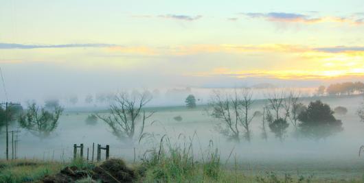 Vorgebirge mit Nebel