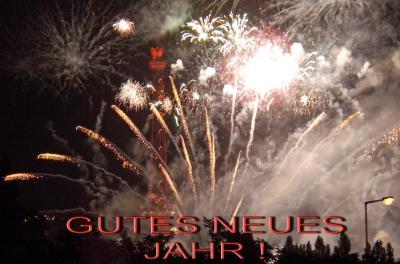 GUTNEU-2-2010