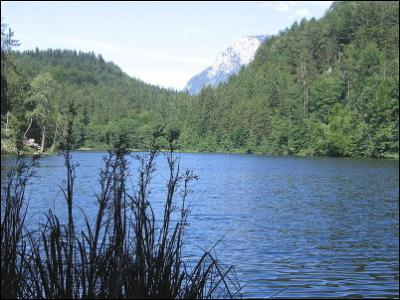 LAeNGSSEE