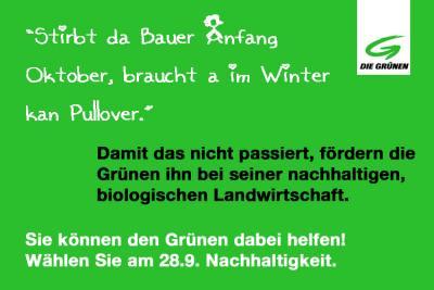 GRUeN2-von-Hoerlesberger