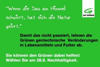 GRUeN3-von-Hoerlesberger