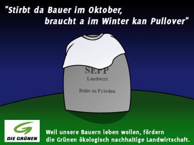 pichler6