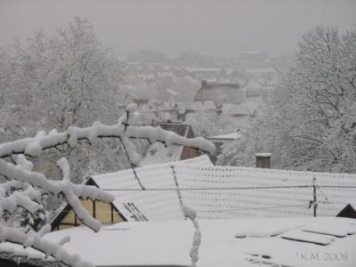 Winterausblick Dez. 2008