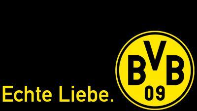 bvb logo alt
