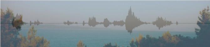 The Corporate Sound Blog
