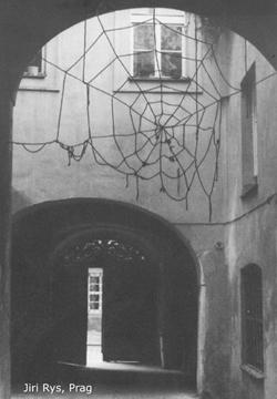 Netz-im-Innenhof_kl