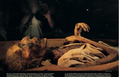 mumie-ramses-ii-974