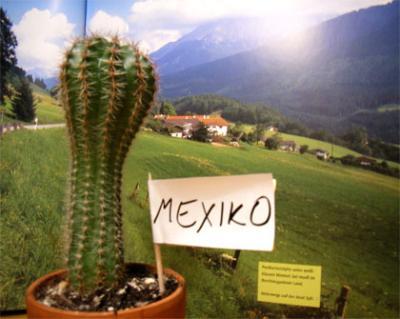 mexiko_oesterr