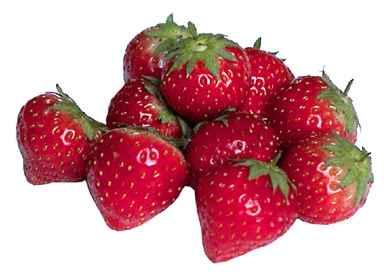 s2-erdbeeren