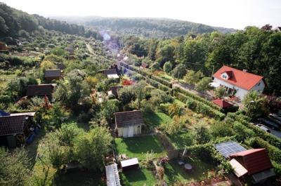 Steigerfoto-Waldbad-070914