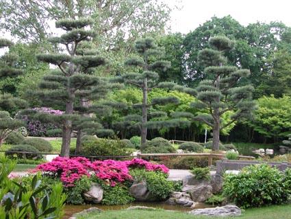 jap-Garten1